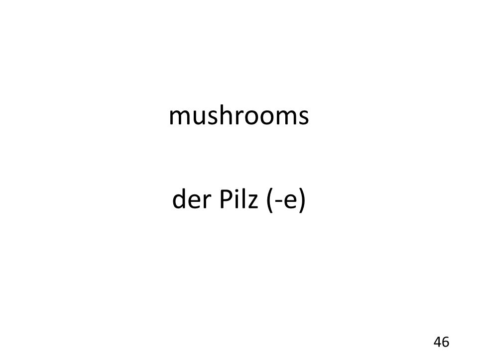 mushrooms der Pilz (-e) 46