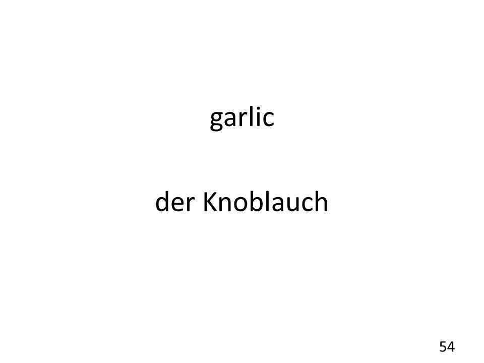 garlic der Knoblauch 54