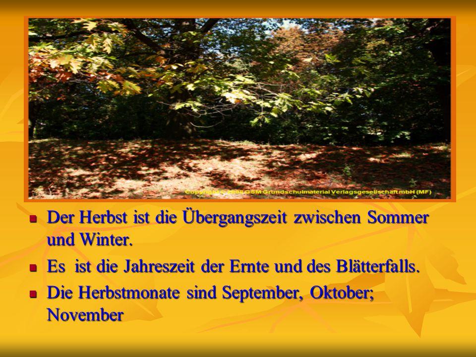 Der Herbst ist die Übergangszeit zwischen Sommer und Winter. Der Herbst ist die Übergangszeit zwischen Sommer und Winter. Es ist die Jahreszeit der Er