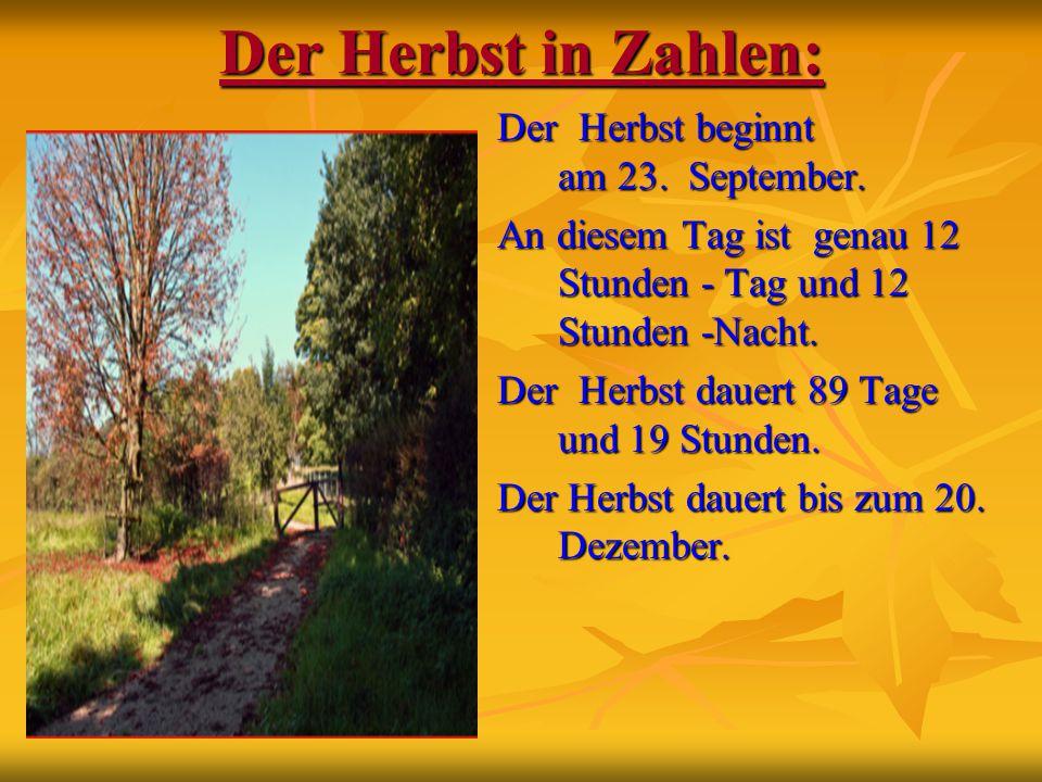 Der Herbst in Zahlen: Der Herbst beginnt am 23. September. An diesem Tag ist genau 12 Stunden - Tag und 12 Stunden -Nacht. Der Herbst dauert 89 Tage u