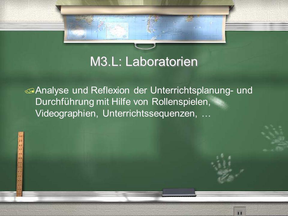 M3.L: Laboratorien  Analyse und Reflexion der Unterrichtsplanung- und Durchführung mit Hilfe von Rollenspielen, Videographien, Unterrichtssequenzen,