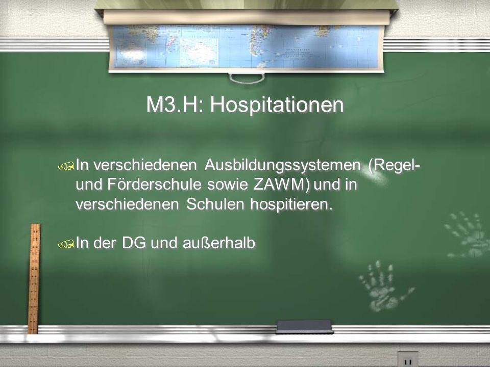 M3.H: Hospitationen / In verschiedenen Ausbildungssystemen (Regel- und Förderschule sowie ZAWM) und in verschiedenen Schulen hospitieren. / In der DG