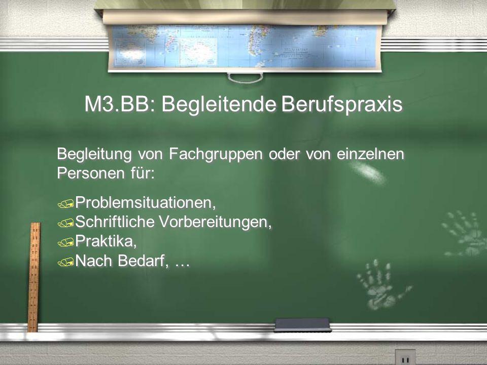 M3.BB: Begleitende Berufspraxis Begleitung von Fachgruppen oder von einzelnen Personen für:  Problemsituationen,  Schriftliche Vorbereitungen,  Pra