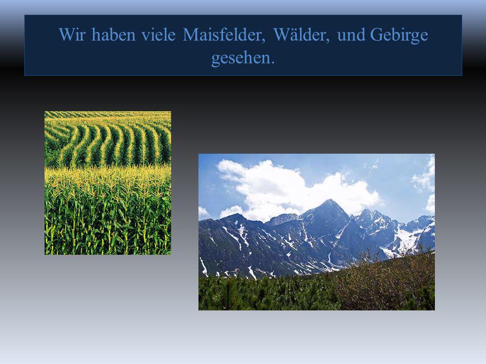 Wir haben viele Maisfelder, Wälder, und Gebirge gesehen.