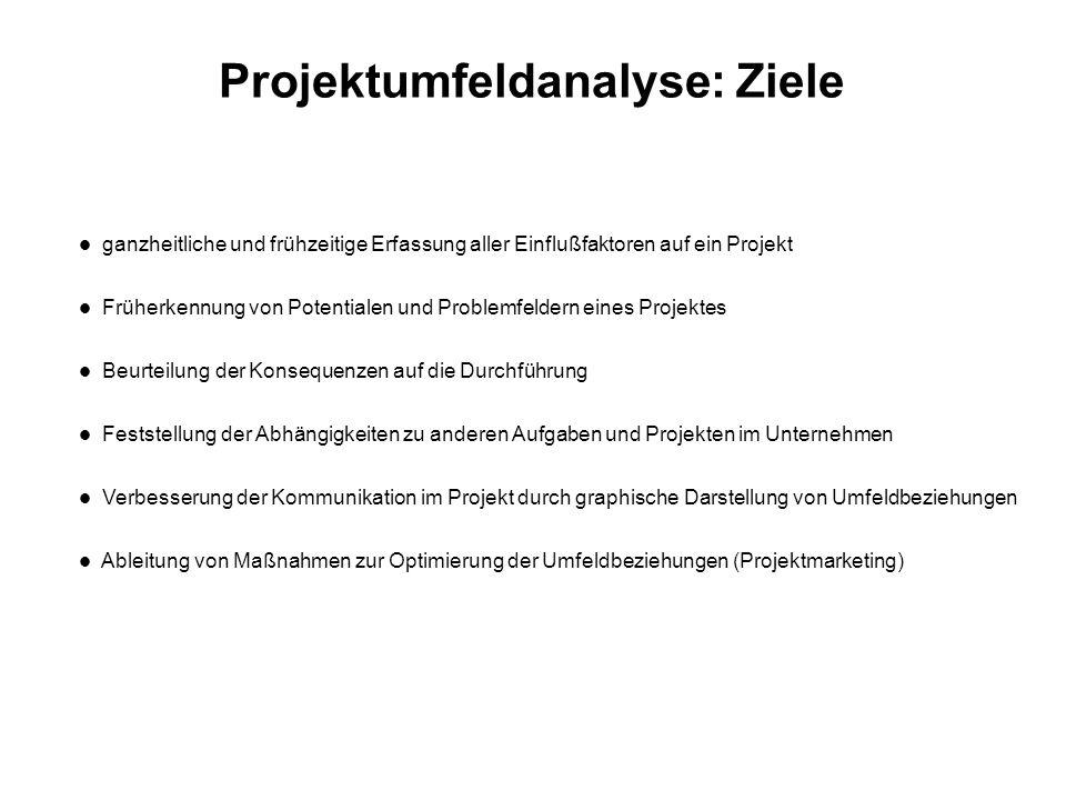 Projektumfeldanalyse: Vorgehensweise 1.