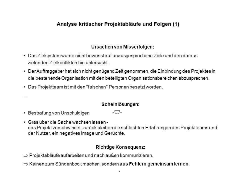. Analyse kritischer Projektabläufe und Folgen (1) Ursachen von Misserfolgen: Das Zielsystem wurde nicht bewusst auf unausgesprochene Ziele und den da