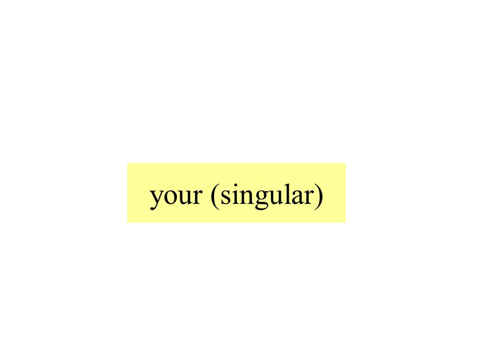 your (singular)