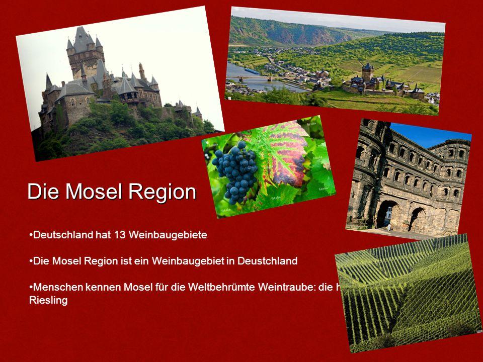 Der Wein der Mosel Region Die ersten Weinreben wurden von den Römern vor fast 2000 Jahren gepflanzt.Die ersten Weinreben wurden von den Römern vor fast 2000 Jahren gepflanzt.