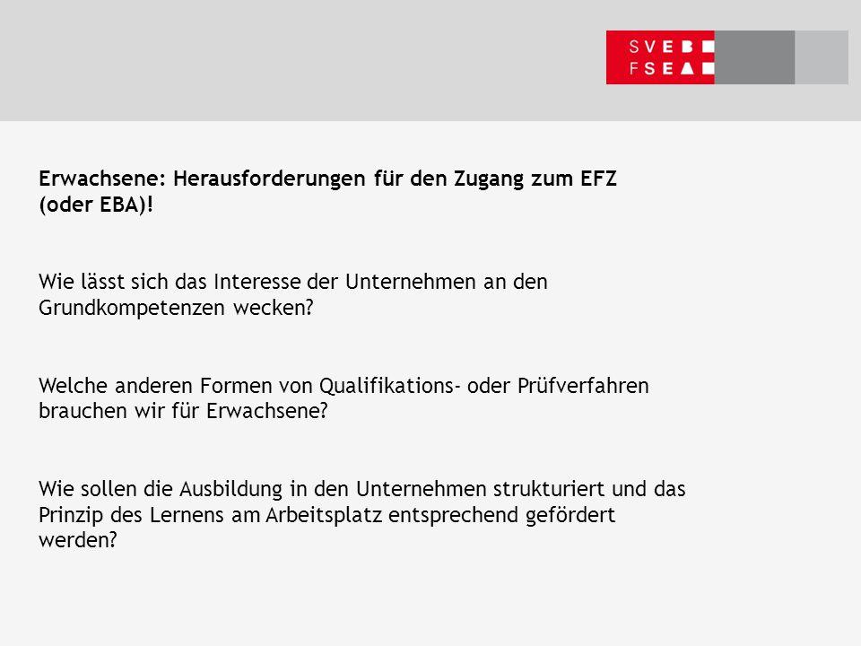 Erwachsene: Herausforderungen für den Zugang zum EFZ (oder EBA).