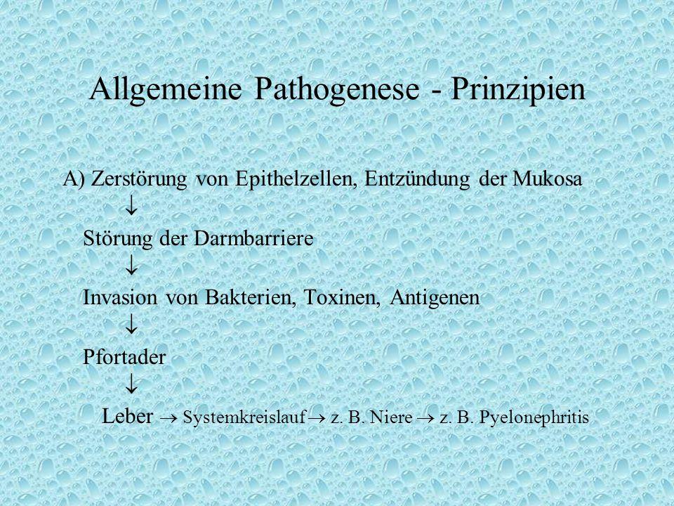 Allgemeine Pathogenese - Prinzipien A) Zerstörung von Epithelzellen, Entzündung der Mukosa  Störung der Darmbarriere  Invasion von Bakterien, Toxinen, Antigenen  Pfortader  Leber  Systemkreislauf  z.