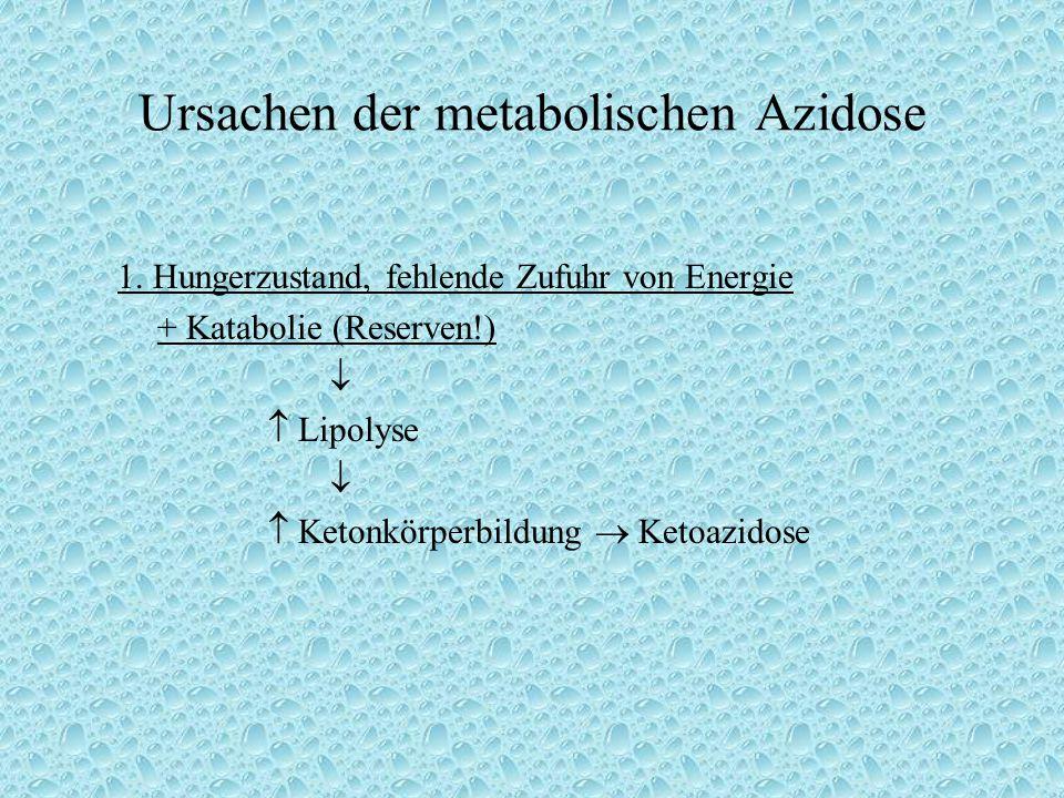 Ursachen der metabolischen Azidose 1. Hungerzustand, fehlende Zufuhr von Energie + Katabolie (Reserven!)   Lipolyse   Ketonkörperbildung  Ketoazi