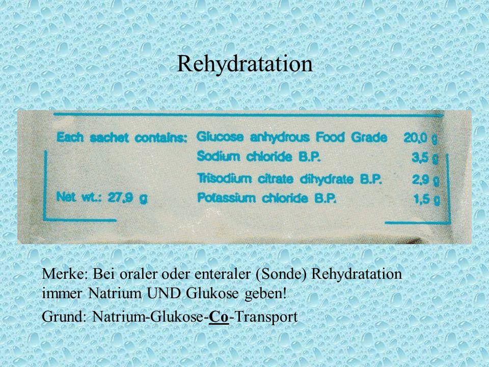 Merke: Bei oraler oder enteraler (Sonde) Rehydratation immer Natrium UND Glukose geben.