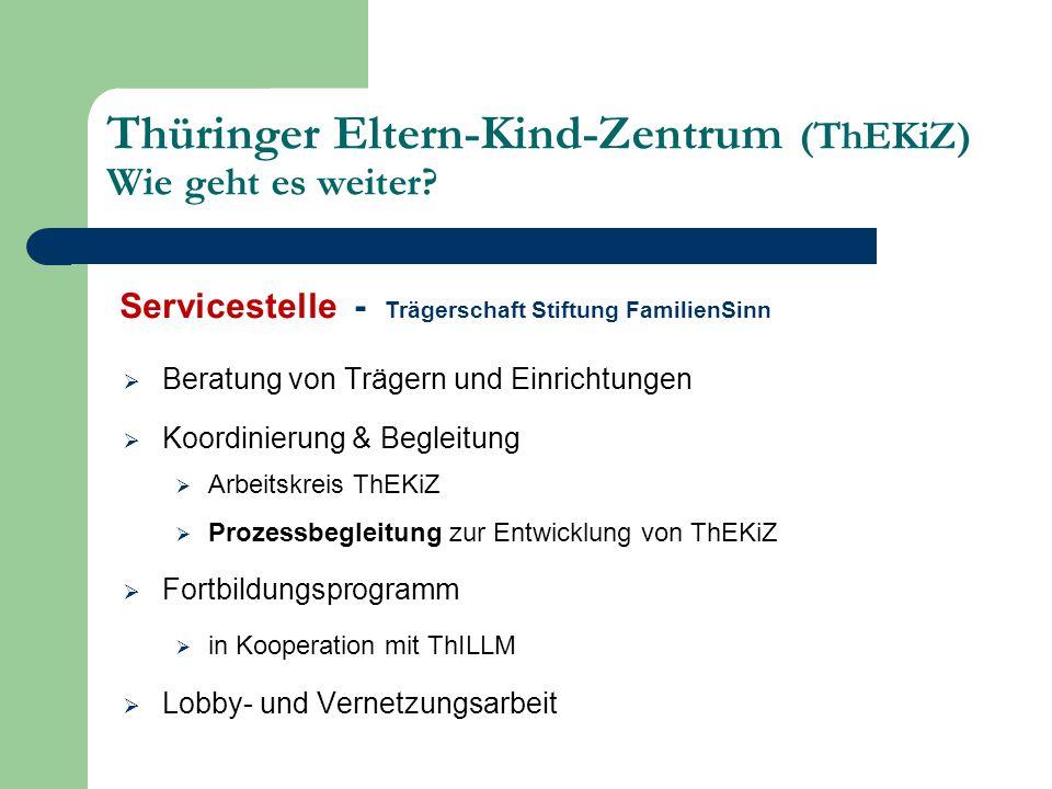  Beratung von Trägern und Einrichtungen  Koordinierung & Begleitung  Arbeitskreis ThEKiZ  Prozessbegleitung zur Entwicklung von ThEKiZ  Fortbildu
