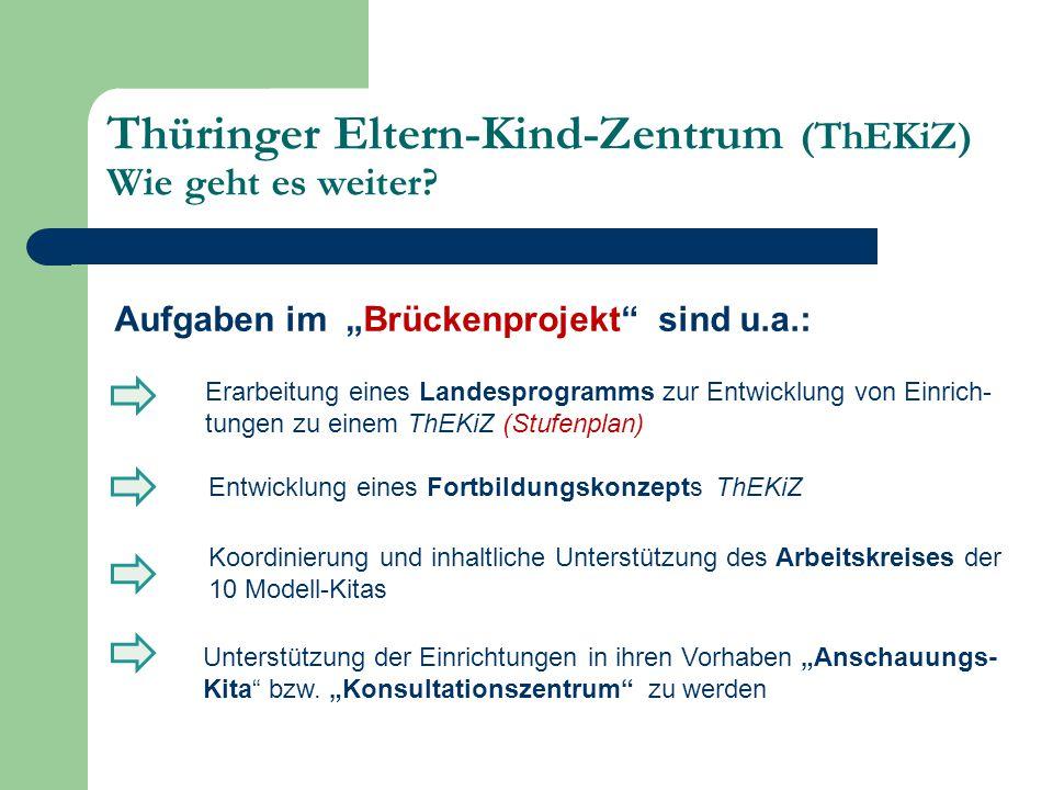 """Aufgaben im """"Brückenprojekt"""" sind u.a.: Erarbeitung eines Landesprogramms zur Entwicklung von Einrich- tungen zu einem ThEKiZ (Stufenplan) Entwicklung"""