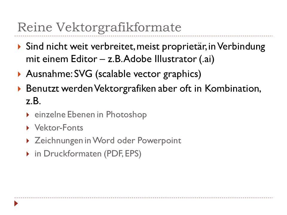 Reine Vektorgrafikformate  Sind nicht weit verbreitet, meist proprietär, in Verbindung mit einem Editor – z.B. Adobe Illustrator (.ai)  Ausnahme: SV