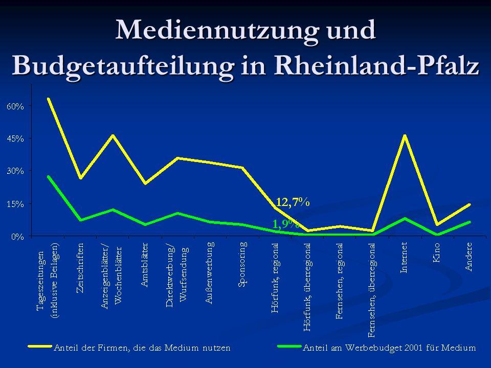 Mediennutzung und Budgetaufteilung in Rheinland-Pfalz