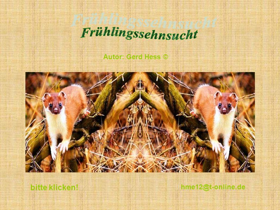 bitte klicken! Autor: Gerd Hess © hme12@t-online.de