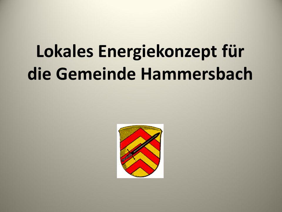 Lokales Energiekonzept für die Gemeinde Hammersbach