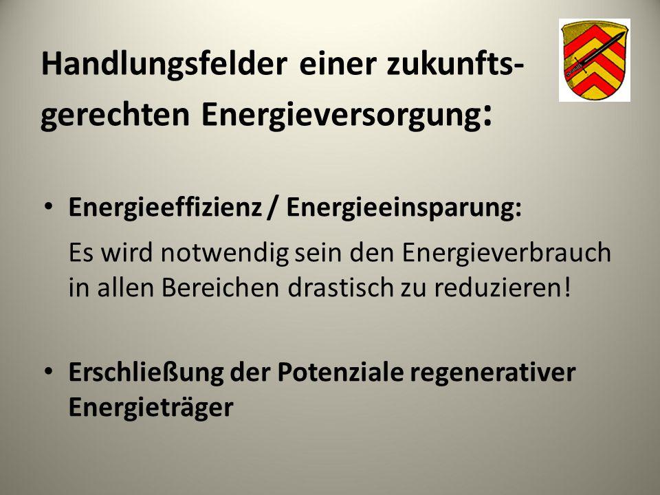 Handlungsfelder einer zukunfts- gerechten Energieversorgung : Energieeffizienz / Energieeinsparung: Es wird notwendig sein den Energieverbrauch in all