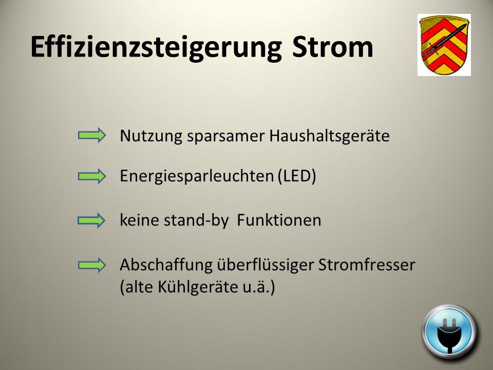Effizienzsteigerung Strom Nutzung sparsamer Haushaltsgeräte Energiesparleuchten (LED) keine stand-by Funktionen Abschaffung überflüssiger Stromfresser
