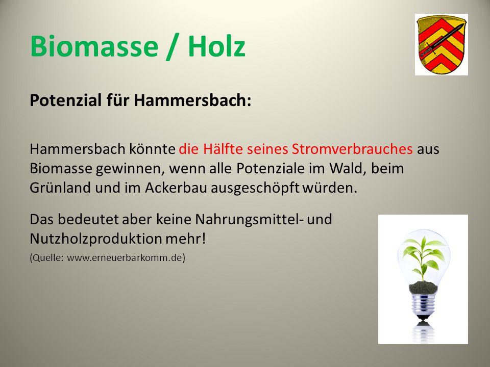 Biomasse / Holz Potenzial für Hammersbach: Hammersbach könnte die Hälfte seines Stromverbrauches aus Biomasse gewinnen, wenn alle Potenziale im Wald,
