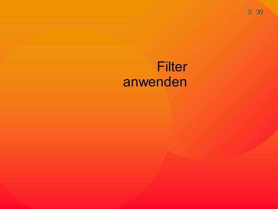 2. 30 Filter anwenden