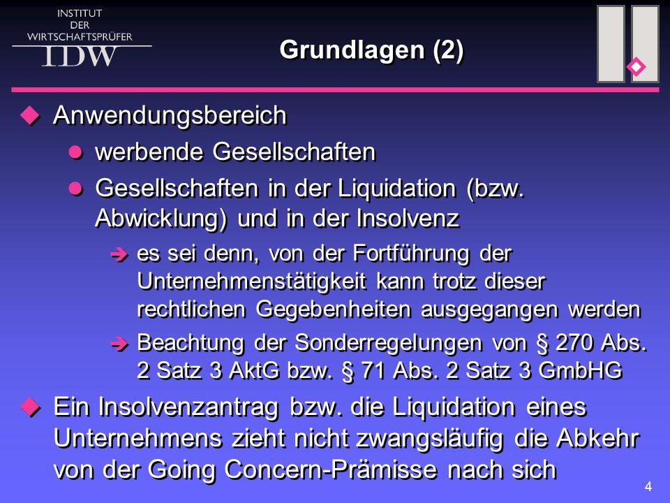 4 Grundlagen (2)  Anwendungsbereich werbende Gesellschaften Gesellschaften in der Liquidation (bzw. Abwicklung) und in der Insolvenz  es sei denn, v