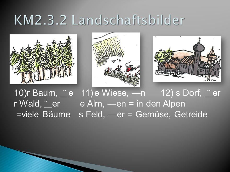 10)r Baum, ¨ e 11)e Wiese, —n 12) s Dorf, ¨ er r Wald, ¨ er e Alm, —en = in den Alpen =viele Bäume s Feld, —er = Gemüse, Getreide