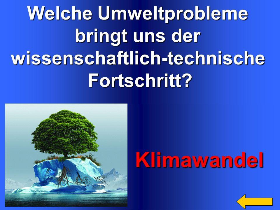 Welche Umweltprobleme bringt uns der wissenschaftlich-technischeFortschritt.
