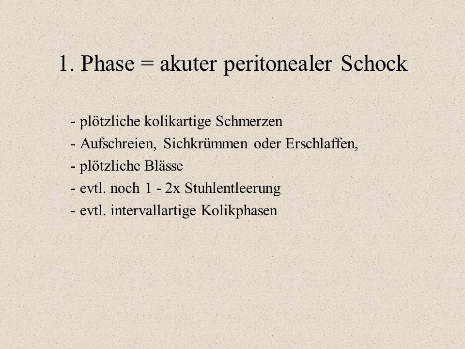 1. Phase = akuter peritonealer Schock - plötzliche kolikartige Schmerzen - Aufschreien, Sichkrümmen oder Erschlaffen, - plötzliche Blässe - evtl. noch