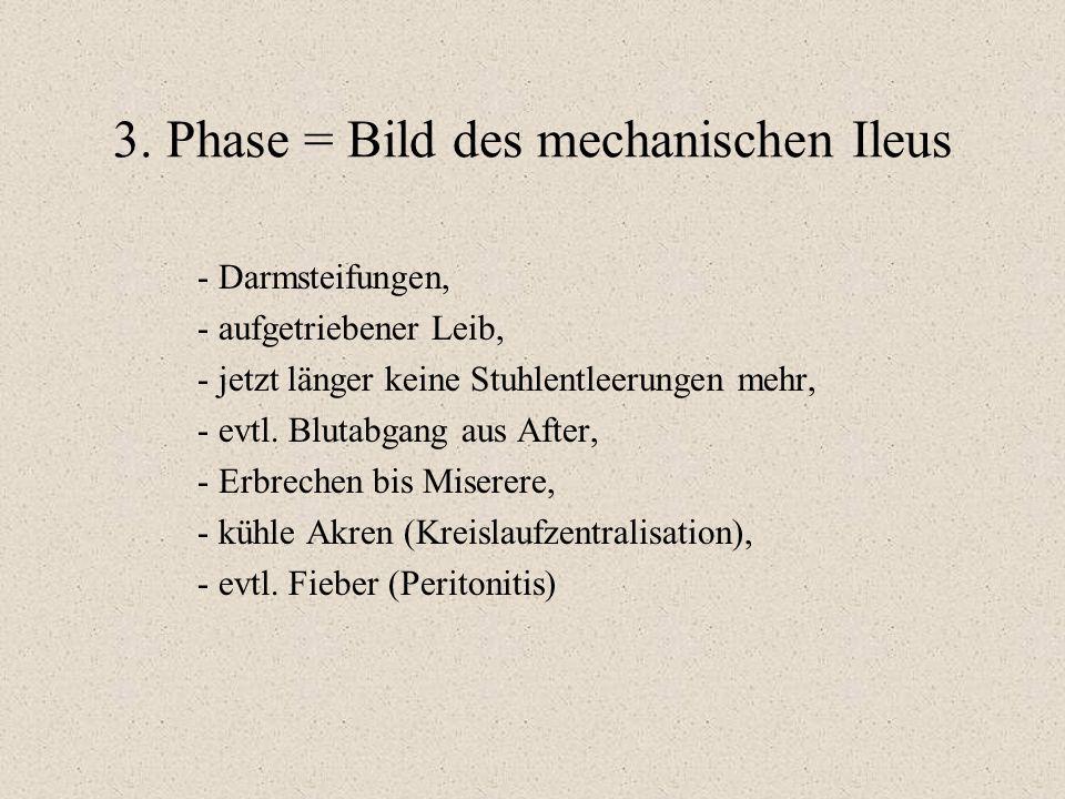 3. Phase = Bild des mechanischen Ileus - Darmsteifungen, - aufgetriebener Leib, - jetzt länger keine Stuhlentleerungen mehr, - evtl. Blutabgang aus Af