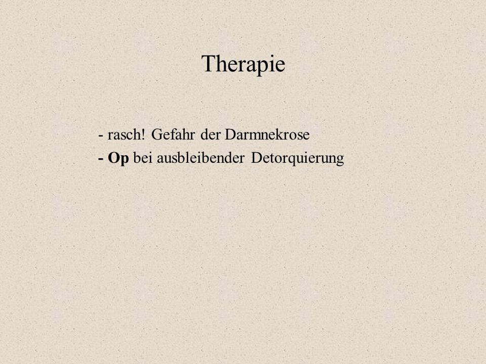 Therapie - rasch! Gefahr der Darmnekrose - Op bei ausbleibender Detorquierung
