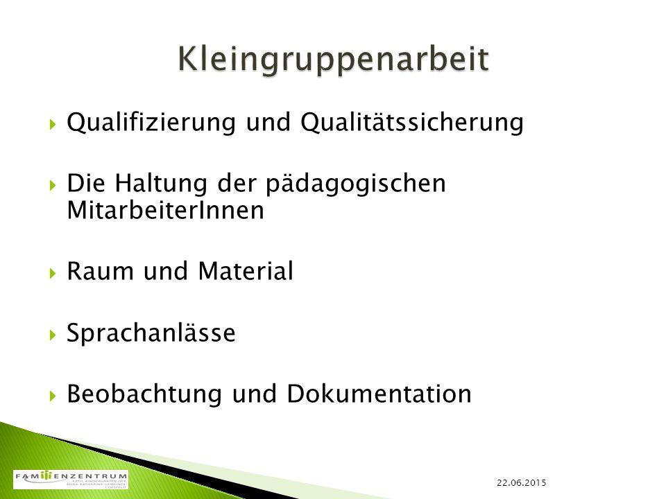  Qualifizierung und Qualitätssicherung  Die Haltung der pädagogischen MitarbeiterInnen  Raum und Material  Sprachanlässe  Beobachtung und Dokumen