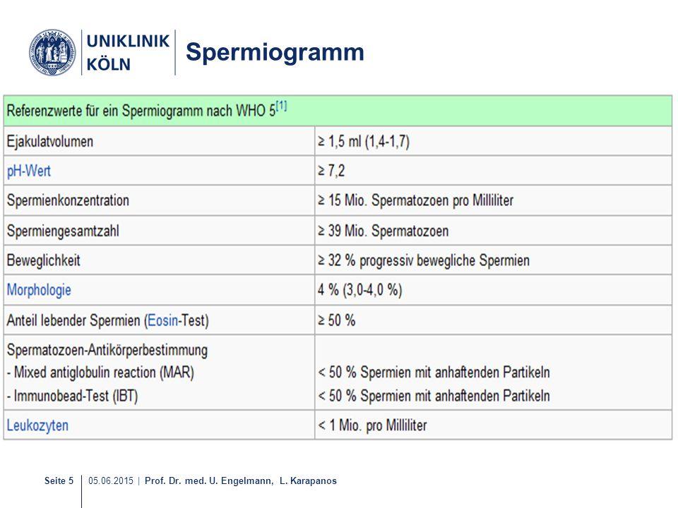 Seite 5 05.06.2015   Prof. Dr. med. U. Engelmann, L. Karapanos Spermiogramm