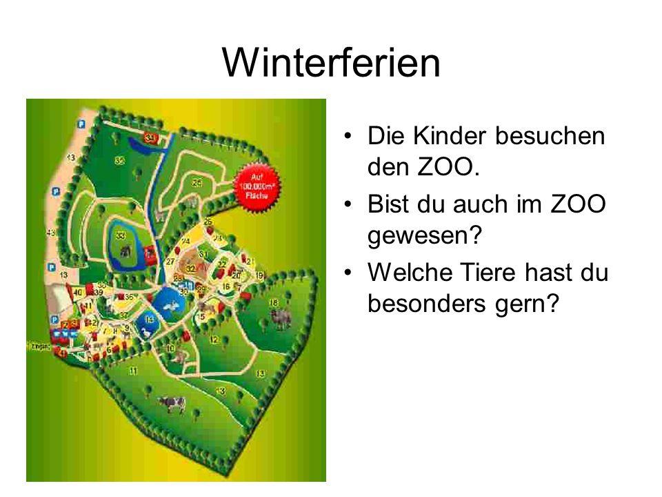 Winterferien Die Kinder besuchen den ZOO. Bist du auch im ZOO gewesen? Welche Tiere hast du besonders gern?