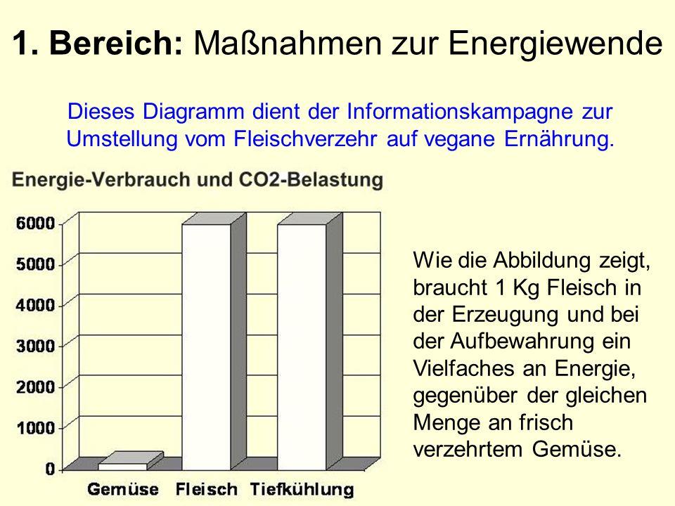 1. Bereich: Maßnahmen zur Energiewende Dieses Diagramm dient der Informationskampagne zur Umstellung vom Fleischverzehr auf vegane Ernährung. Wie die