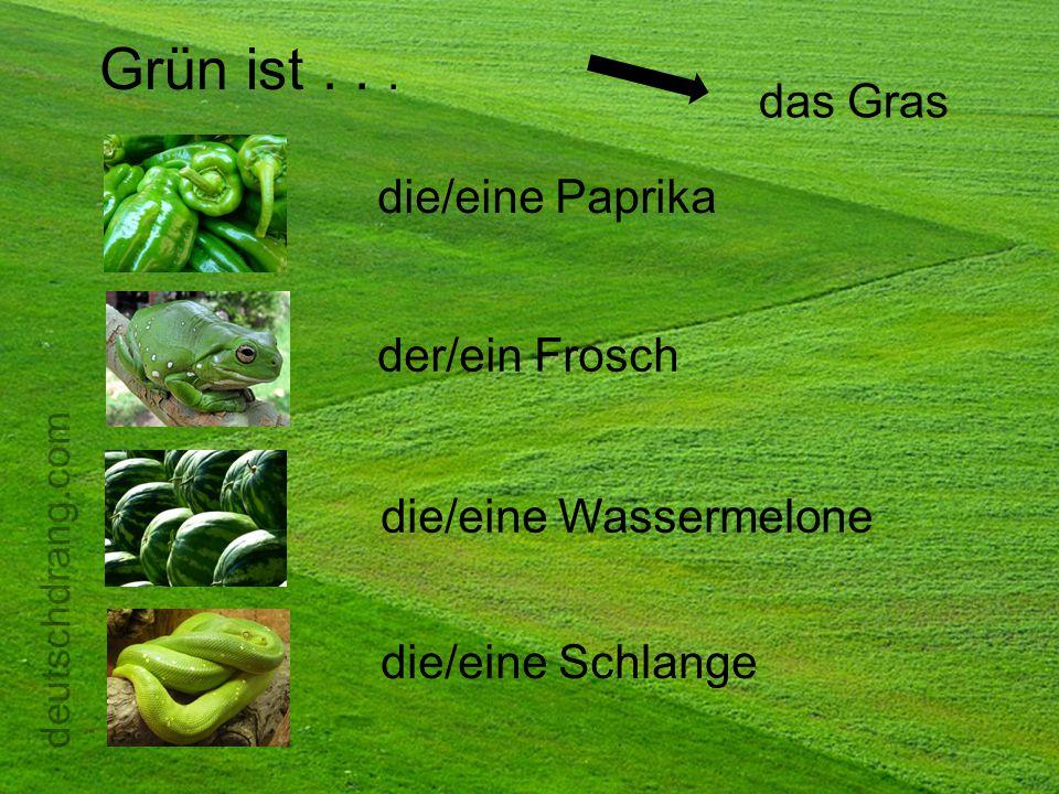 Grün ist... die/eine Paprika der/ein Frosch die/eine Schlange die/eine Wassermelone das Gras deutschdrang.com