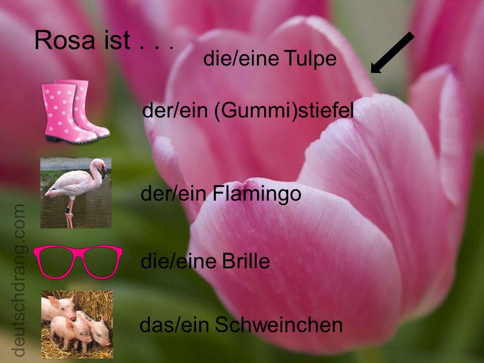 Rosa ist... die/eine Tulpe der/ein (Gummi)stiefel der/ein Flamingo die/eine Brille das/ein Schweinchen deutschdrang.com