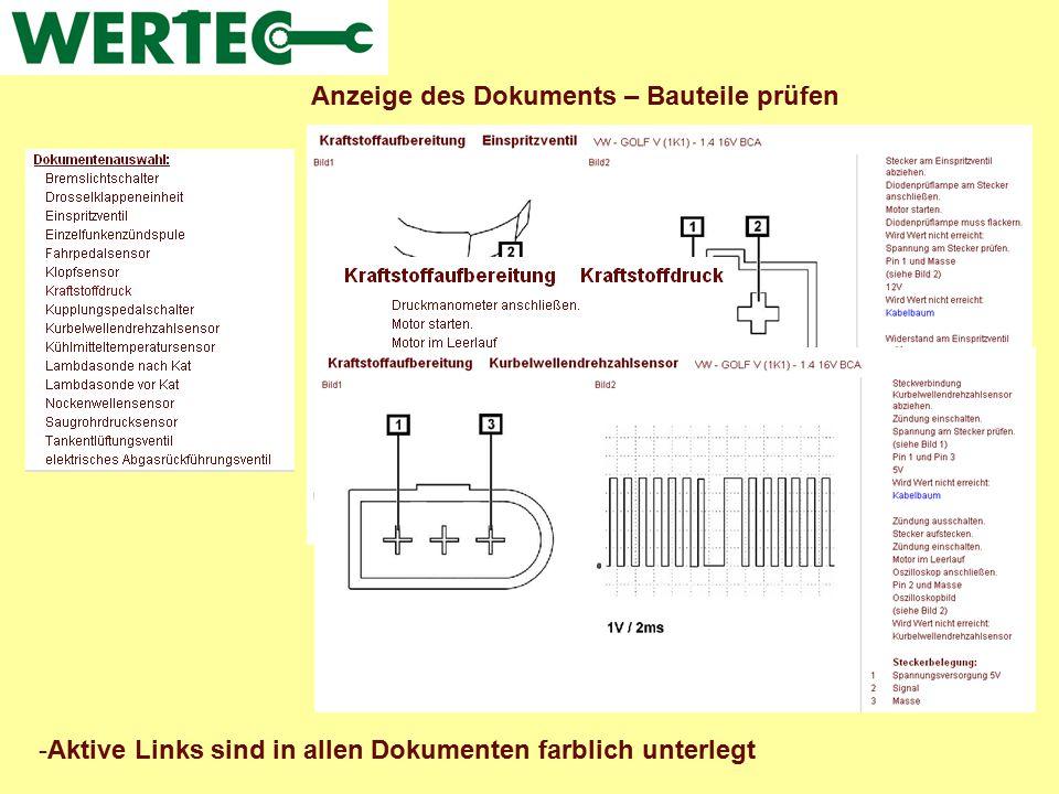 Anzeige des Dokuments – Anlernen / Codieren -Aktive Links sind in allen Dokumenten farblich unterlegt (hier z.B.