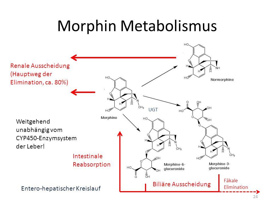 Morphin Metabolismus Biliäre Ausscheidung Intestinale Reabsorption Entero-hepatischer Kreislauf Renale Ausscheidung (Hauptweg der Elimination, ca.