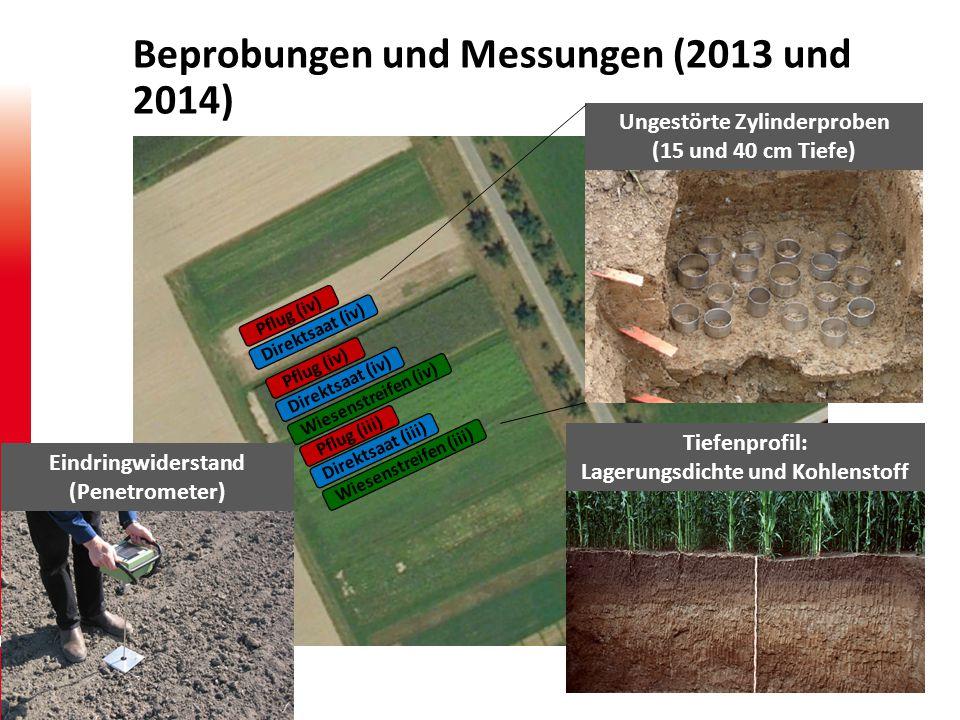 2 Photo: Per Schjønning Beprobungen und Messungen (2013 und 2014) Pflug (iii) Direktsaat (iii) Wiesenstreifen (iii) Pflug (iv) Direktsaat (iv) Wiesenstreifen (iv) Pflug (iv) Direktsaat (iv) Eindringwiderstand (Penetrometer) Ungestörte Zylinderproben (15 und 40 cm Tiefe) Tiefenprofil: Lagerungsdichte und Kohlenstoff