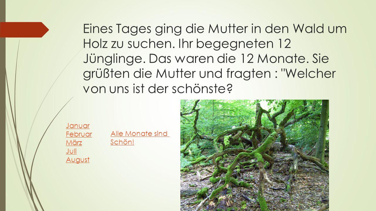 Eines Tages ging die Mutter in den Wald um Holz zu suchen. Ihr begegneten 12 Jünglinge. Das waren die 12 Monate. Sie grüßten die Mutter und fragten :
