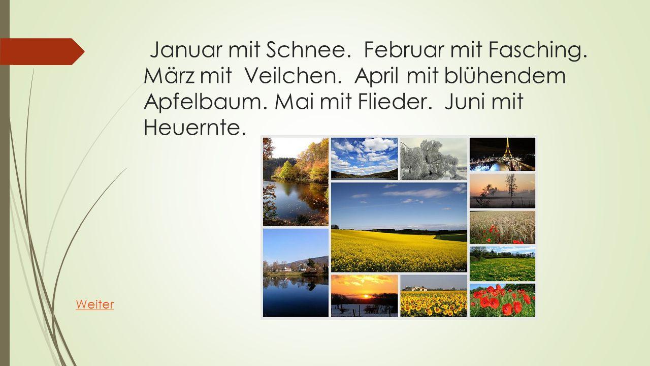 Januar mit Schnee. Februar mit Fasching. März mit Veilchen. April mit blühendem Apfelbaum. Mai mit Flieder. Juni mit Heuernte. Weiter
