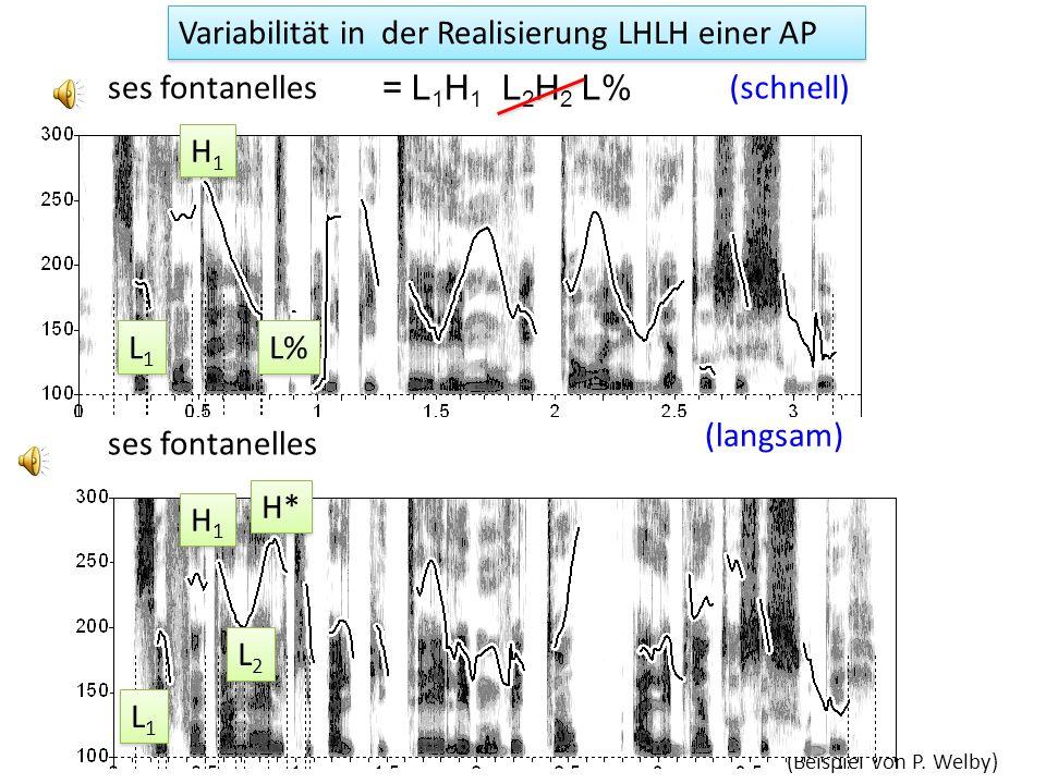Le mélanome, la mélanine et le collagène étaient étudiés à la fac L1L1 L1L1 H1H1 H1H1 L1L1 L1L1 H1H1 H1H1 m ɛ l a n o mm ɛ l a n i n AP aus Welby (200