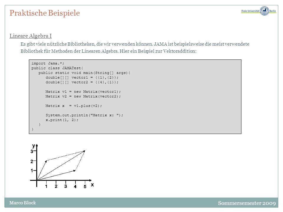 Sommersemester 2009 Marco Block Praktische Beispiele Lineare Algebra I Es gibt viele nützliche Bibliotheken, die wir verwenden können. JAMA ist beispi