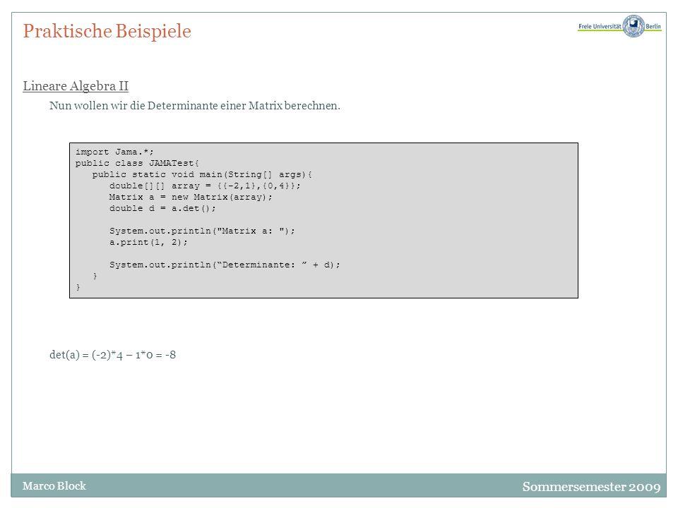Sommersemester 2009 Marco Block Praktische Beispiele Lineare Algebra II Nun wollen wir die Determinante einer Matrix berechnen. import Jama.*; public
