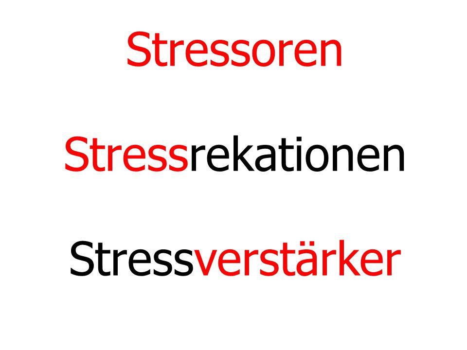 Stressoren Stressrekationen Stressverstärker