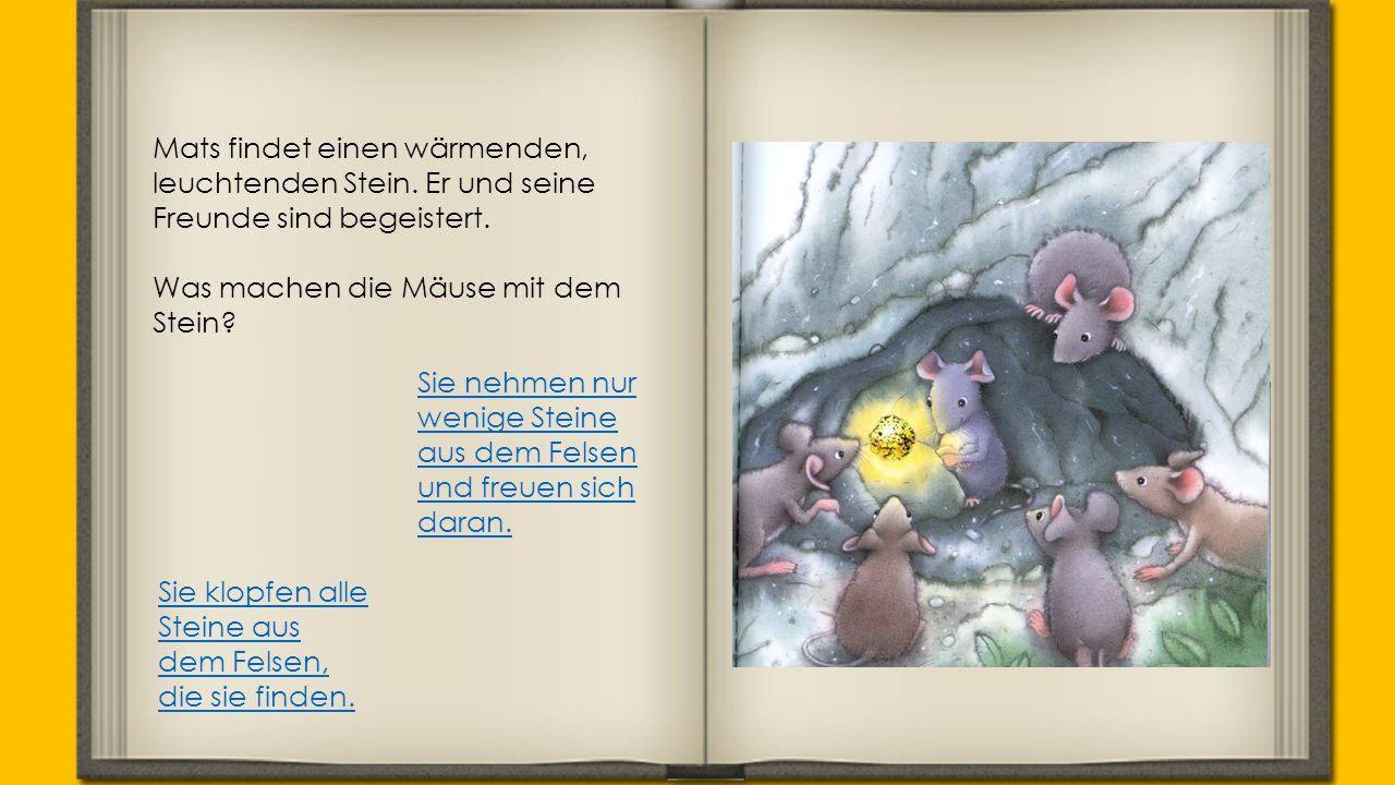 Die Mäuse finden sehr viele Steine.Die Höhlen auf der Insel Werden immer grösser und grösser.