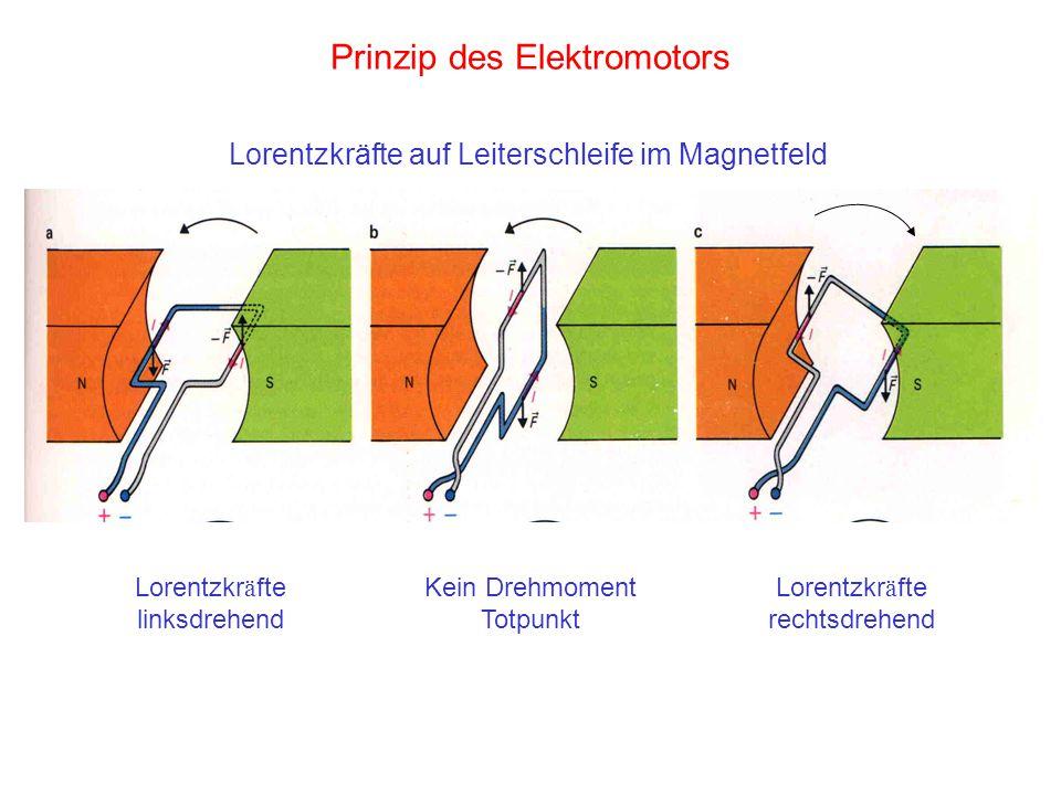 Prinzip des Elektromotors Lorentzkr ä fte linksdrehend Kein Drehmoment Totpunkt Lorentzkr ä fte rechtsdrehend Lorentzkräfte auf Leiterschleife im Magn