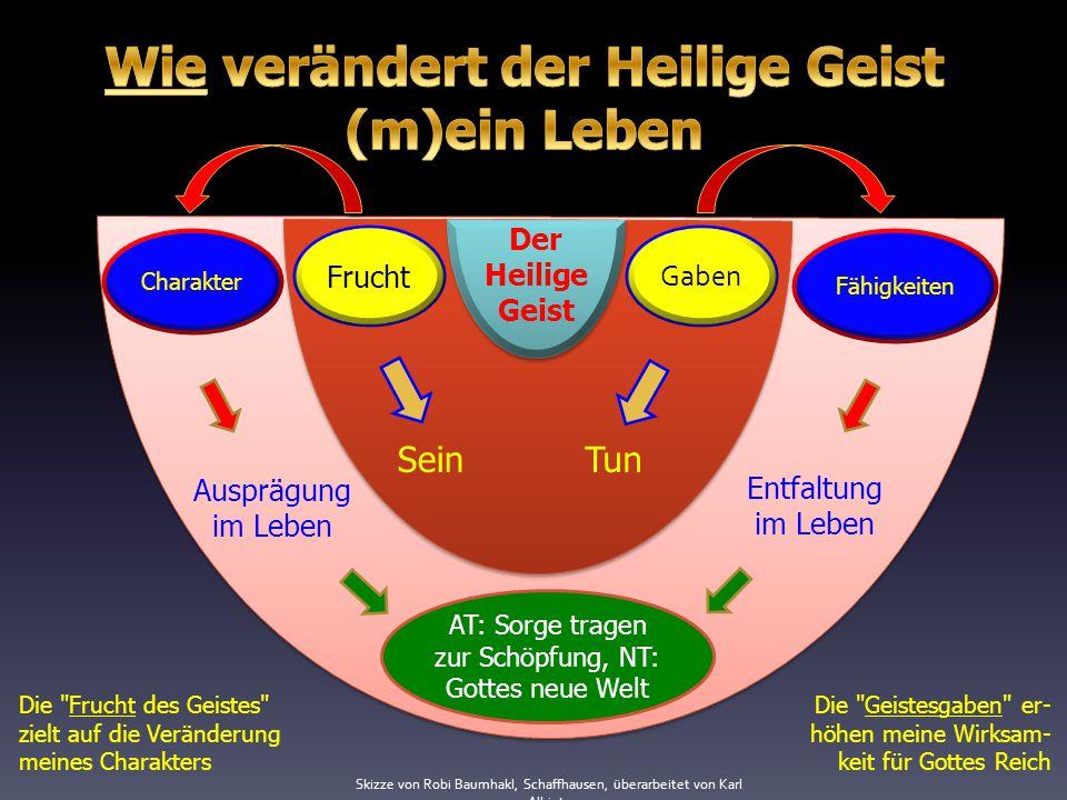 Charakter Fähigkeiten Entfaltung im Leben Ausprägung im Leben AT: Sorge tragen zur Schöpfung, NT: Gottes neue Welt Der Heilige Geist Frucht Gaben Sein